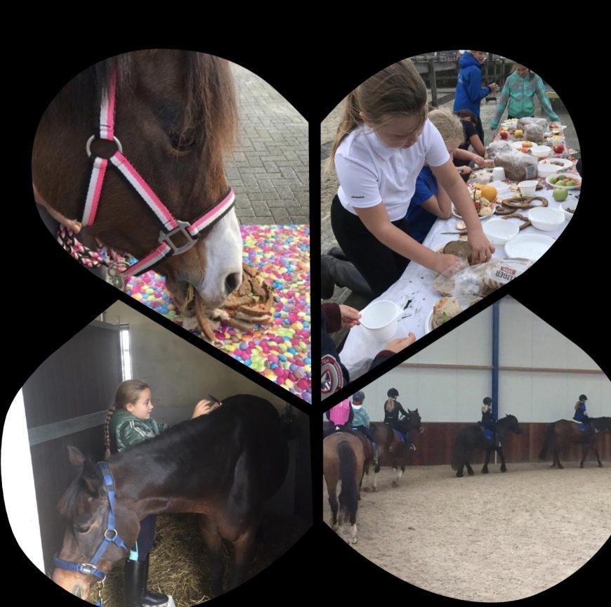 Ponykampdag tijdens de voorjaarsvakantie!